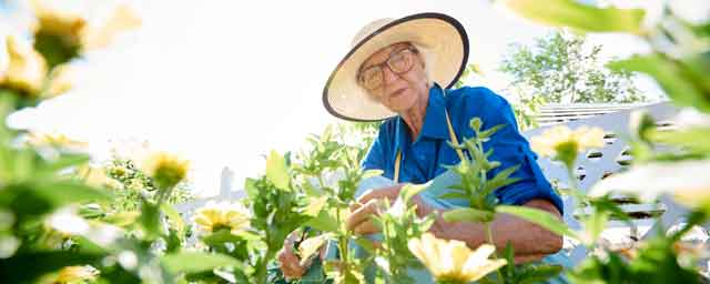 5 Ways Seniors Can Create A Sustainable Lifestyle For Retirement